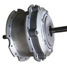 Gear Motor LE300GR
